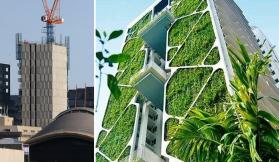 A green solution to an unsightly problem