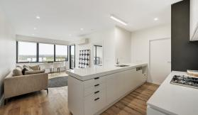 Willow - 160 Williamson Road, Doncaster